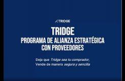 Webinario: TRIDGE, Programa de Alianza Estratégica con Proveedores