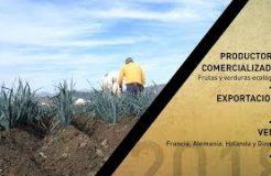 Frutos Los Pisaos abrirá una delegación en Centroeuropa para reforzar su internacionalización