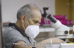 La sevillana Noruco amplía sus instalaciones para convertirse en el mayor fabricante de tecnología para endoscopias de Europa