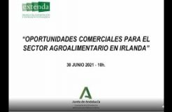 """Webinario """"Oportunidades comerciales para el sector agroalimentario en Irlanda"""""""