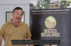 Nueces de Calonge incrementará más de un 60% su bosque para abordar nuevos mercados internacionales
