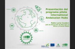"Webinario de presentación del ""Programa Piloto International Andalusian Hubs"""