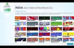 Webinario India: Retos y oportunidades en el marco del COVID-19