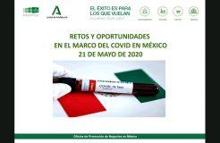 Webinario México: Retos y oportunidades en el marco del COVID-19
