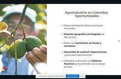 """Webinario: """"Oportunidades para la industria auxiliar de la agricultura en Colombia"""""""
