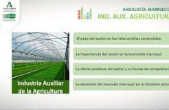 Jornada sobre el Sector de la Industria Auxiliar de la Agricultura en Marruecos