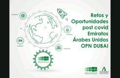 """Webinario """"Retos y oportunidades en el marco del Covid-19 en Emiratos Árabes"""""""
