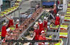 Grupo Caparrós proyecta su desembarco en mercados de Oriente Medio y China