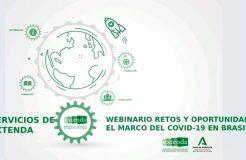 """Webinario """"Retos y oportunidades en el marco de la Covid-19 en Brasil"""""""