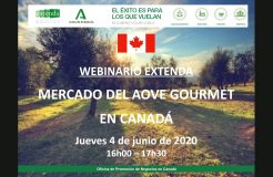 """Webinario: """"El mercado del aceite de oliva gourmet en Canadá"""""""