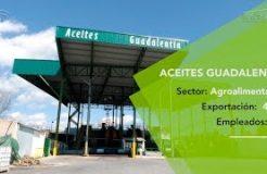 Las exportaciones ya suman el 40% de la facturación de Aceites Guadalentín