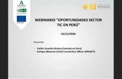 """Webinario """"Oportunidades para el sector TIC en Perú"""""""