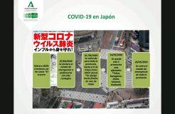 Webinario Japón: retos y oportunidades en el marco del COVID-19