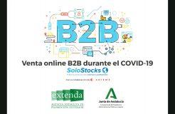 """Webinario: """"Venta online B2B durante el COVID-19: plataforma SoloStocks"""""""