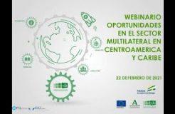 Webinario: Oportunidades en el Sector Multilateral en Centroamérica y Caribe