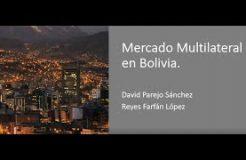 """WEBINARIO """"Oportunidades del mercado multilateral en Bolivia"""""""