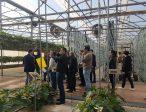 XII Encuentro Industria Auxiliar Extenda visita a empresa Pulpí