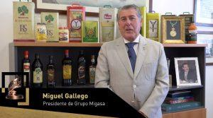 Trayectoria Internacional (Empresa): Migasa