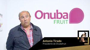 Empresa Exportadora: Onubafruit