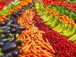 Exportaciones agroalimentarias Andalucía primer trimestre 2021